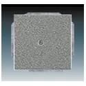 Kryt zaslepovací, s upevňovacím třmenem metalická šedá ABB 1710-0-3843, 2CKA001710A3843